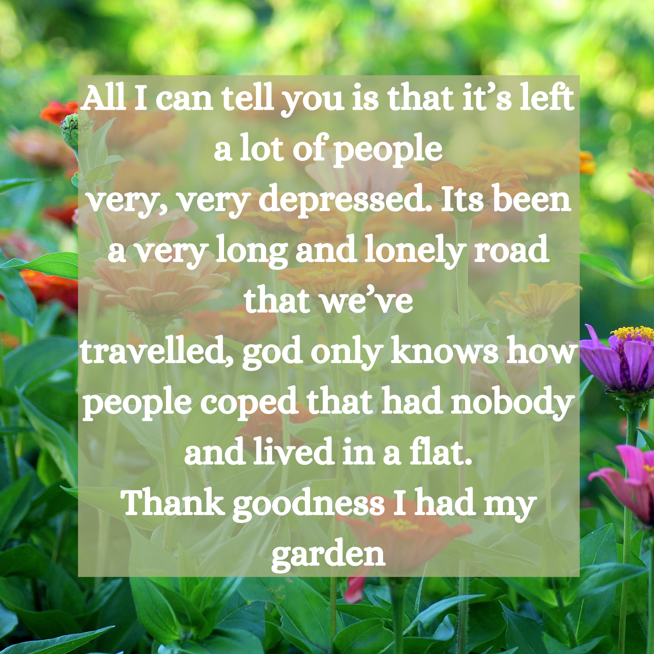 Quote from text: All I can tell you is that it's left a lot of people very, very depressed. Its been a very long and lonely road that we've travelled, god only knows how people coped that had nobody and lived in a flat. Thank goodness I had my garden